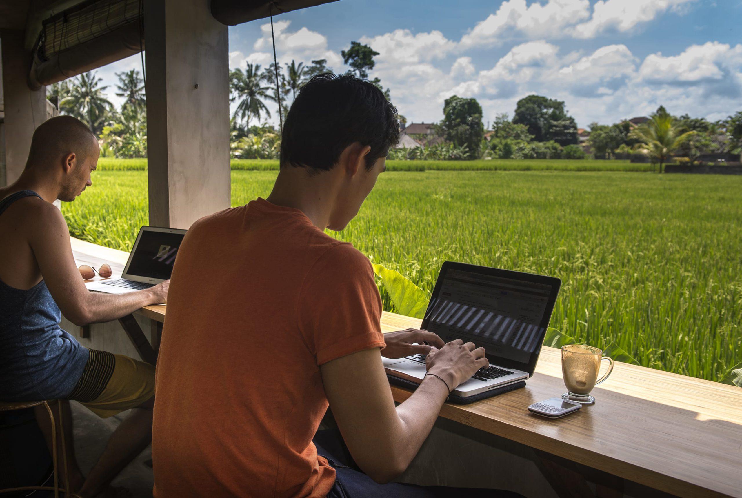 Кем работать на Бали