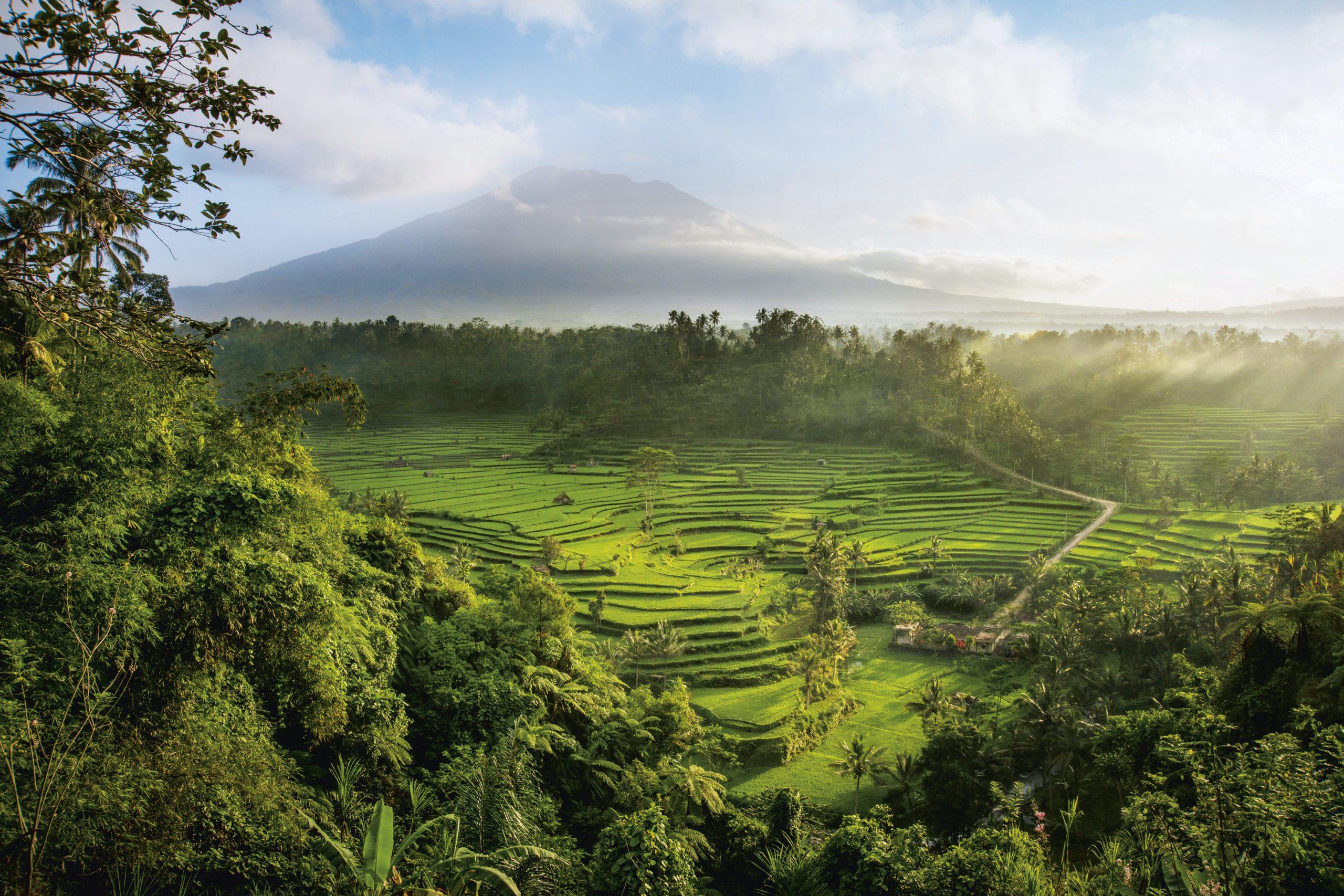 На Бали самостоятельно