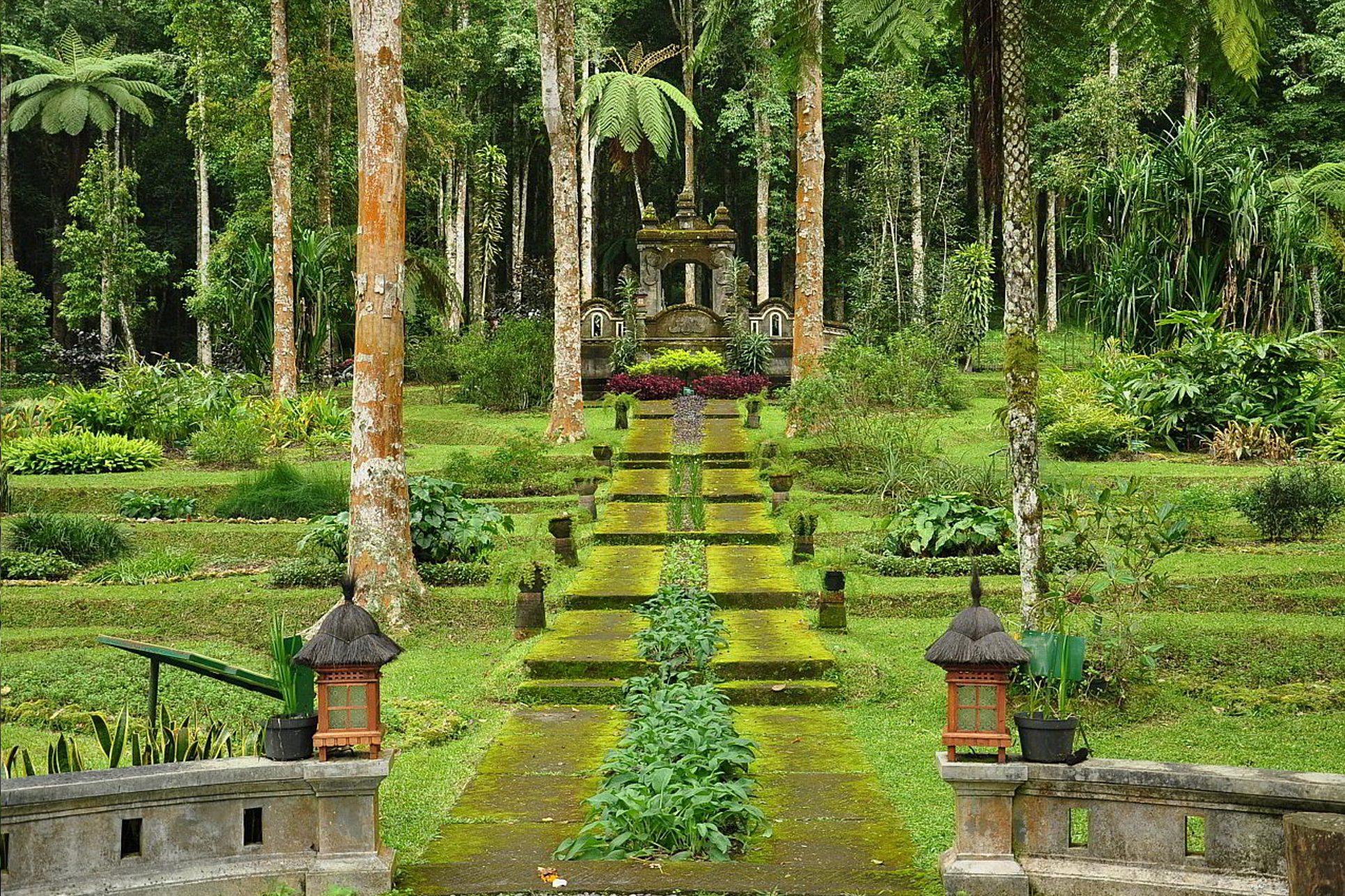 Фото Bedugul Botanical Garden