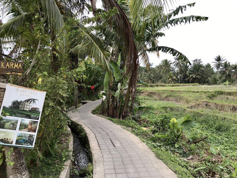 Фото тропы Sari Organik