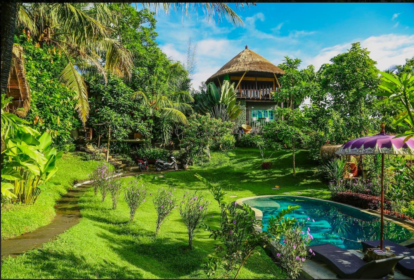 Погода на Бали в январе