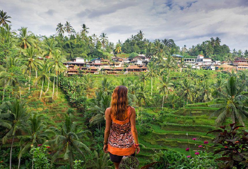 Рисовые поля Тегаллаланг