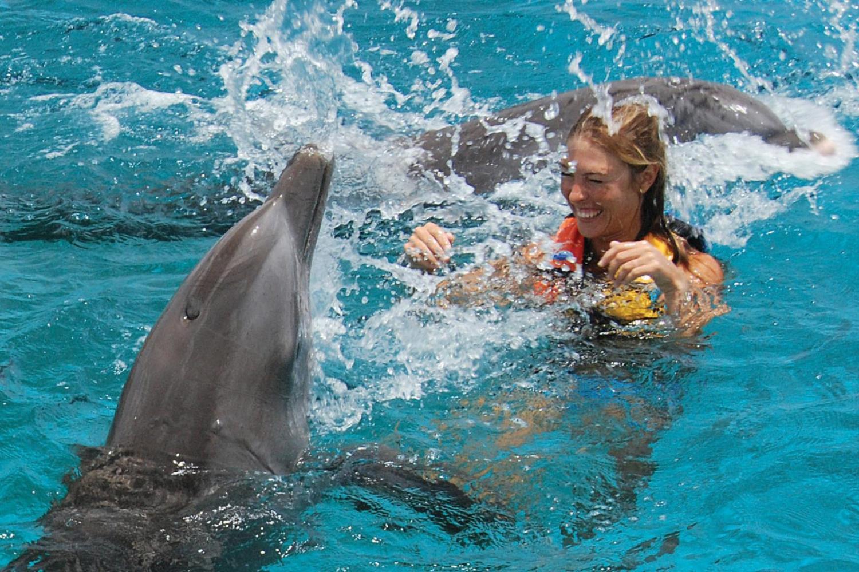 Фото дельфинов на Бали