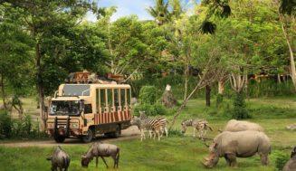 Сафари парк на Бали