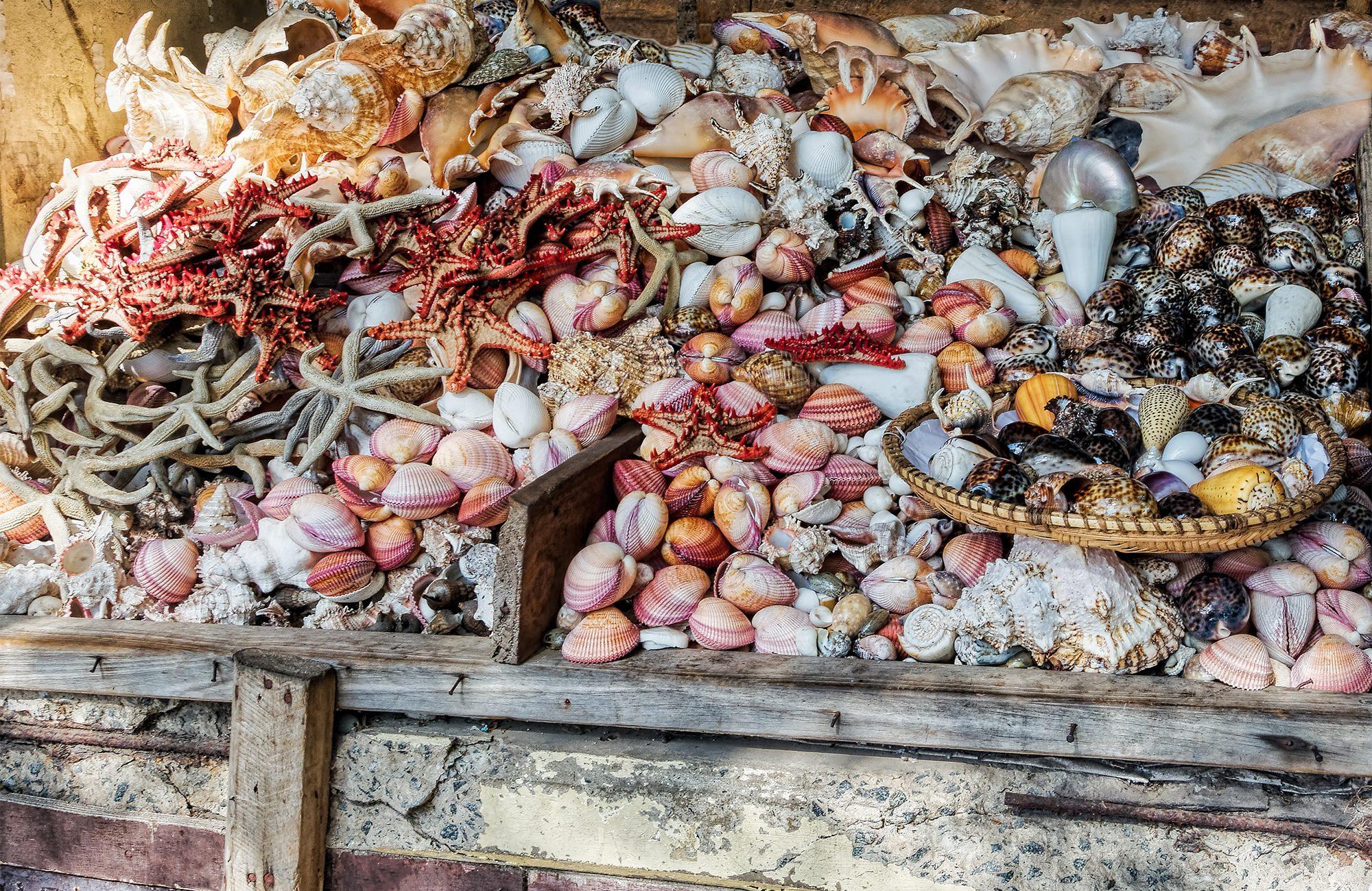 Что нельзя вывозить за пределы Бали