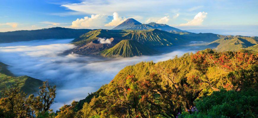 Как добраться с Бали до Явы