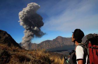 Опасности для туристов на Бали