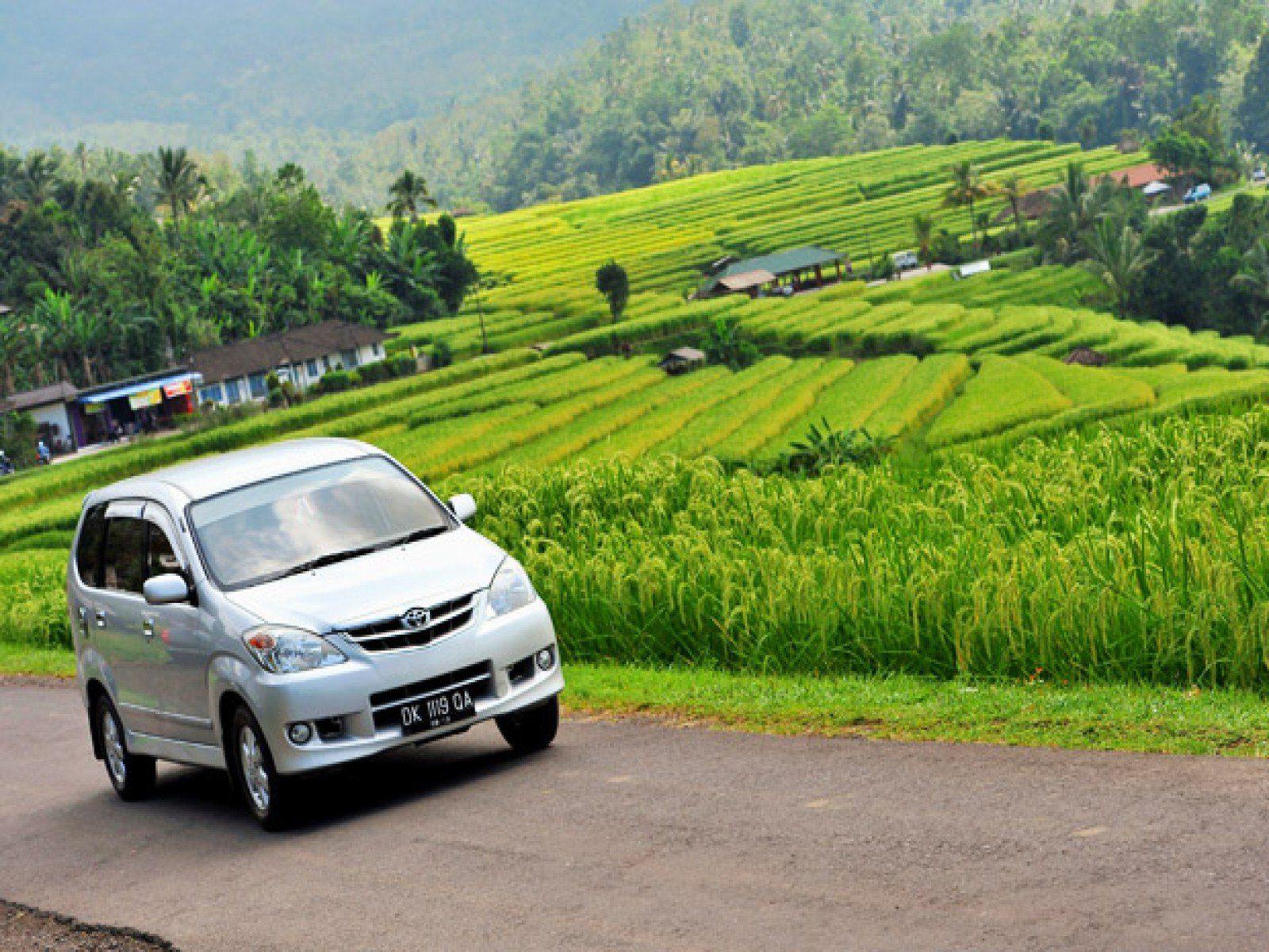 Нюансы вождения авто на Бали