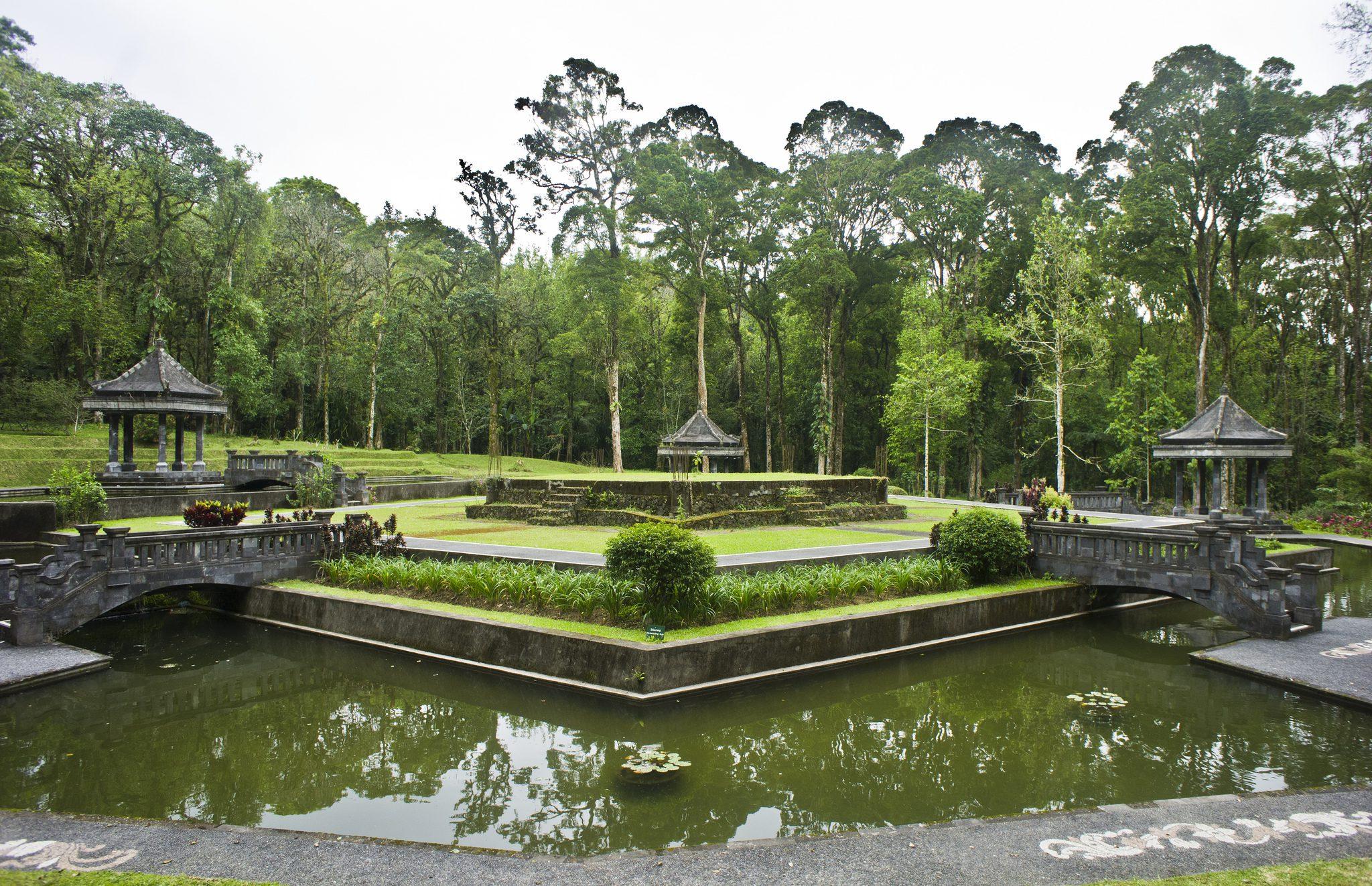 Ботанический сад в Убуде
