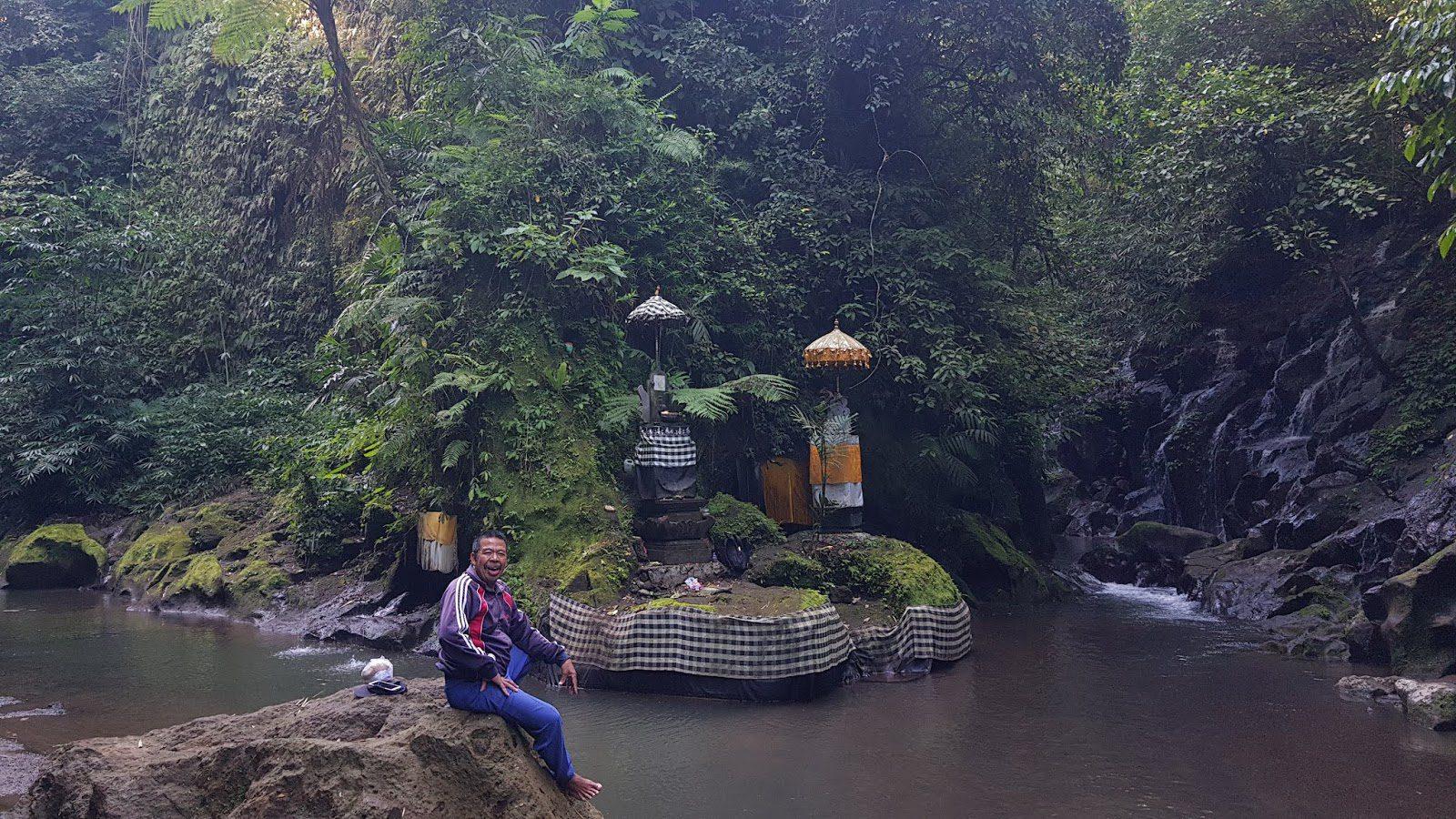 Фото на фоне Campuhan Bridges