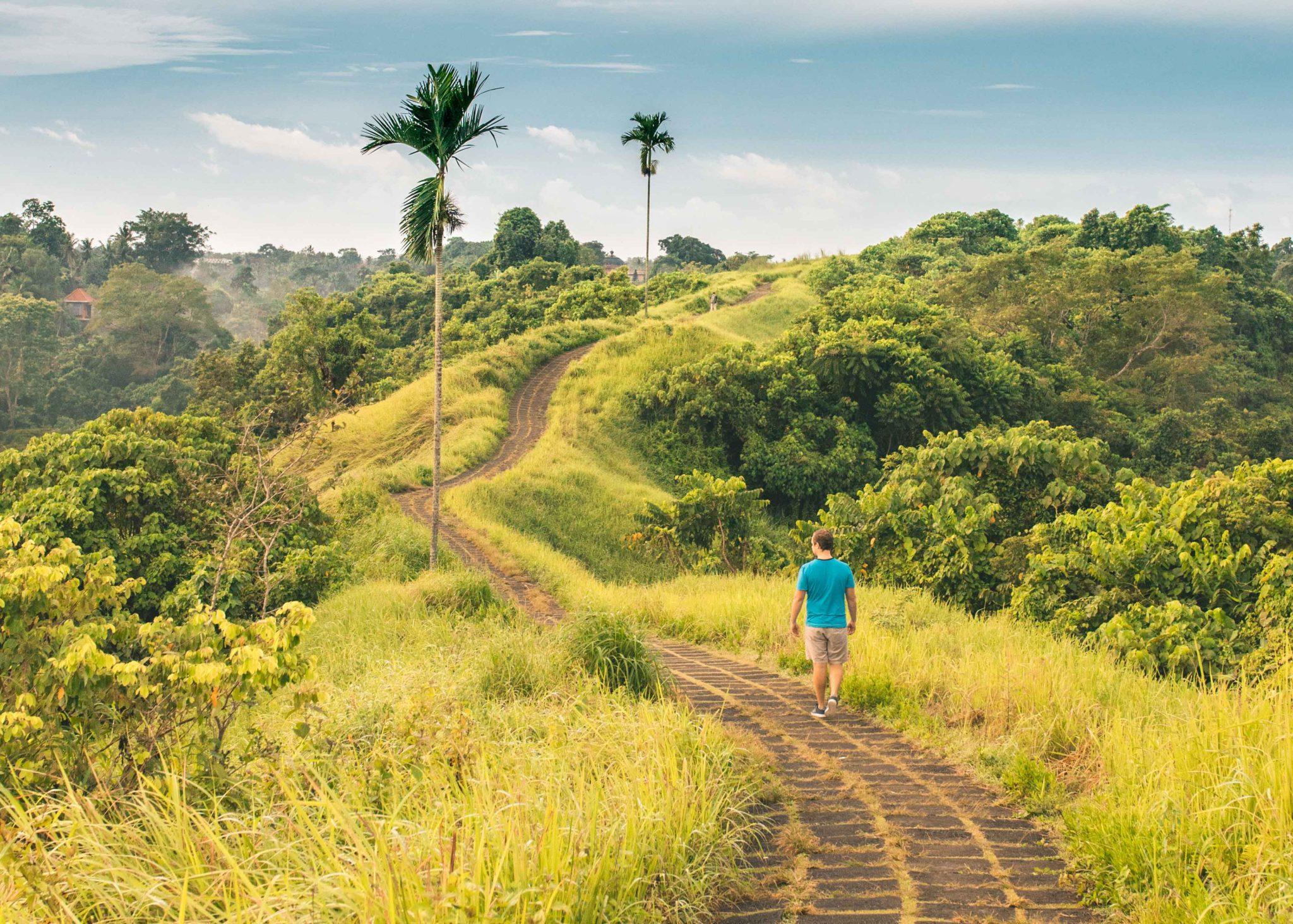 Вид на основную дорогу тропы