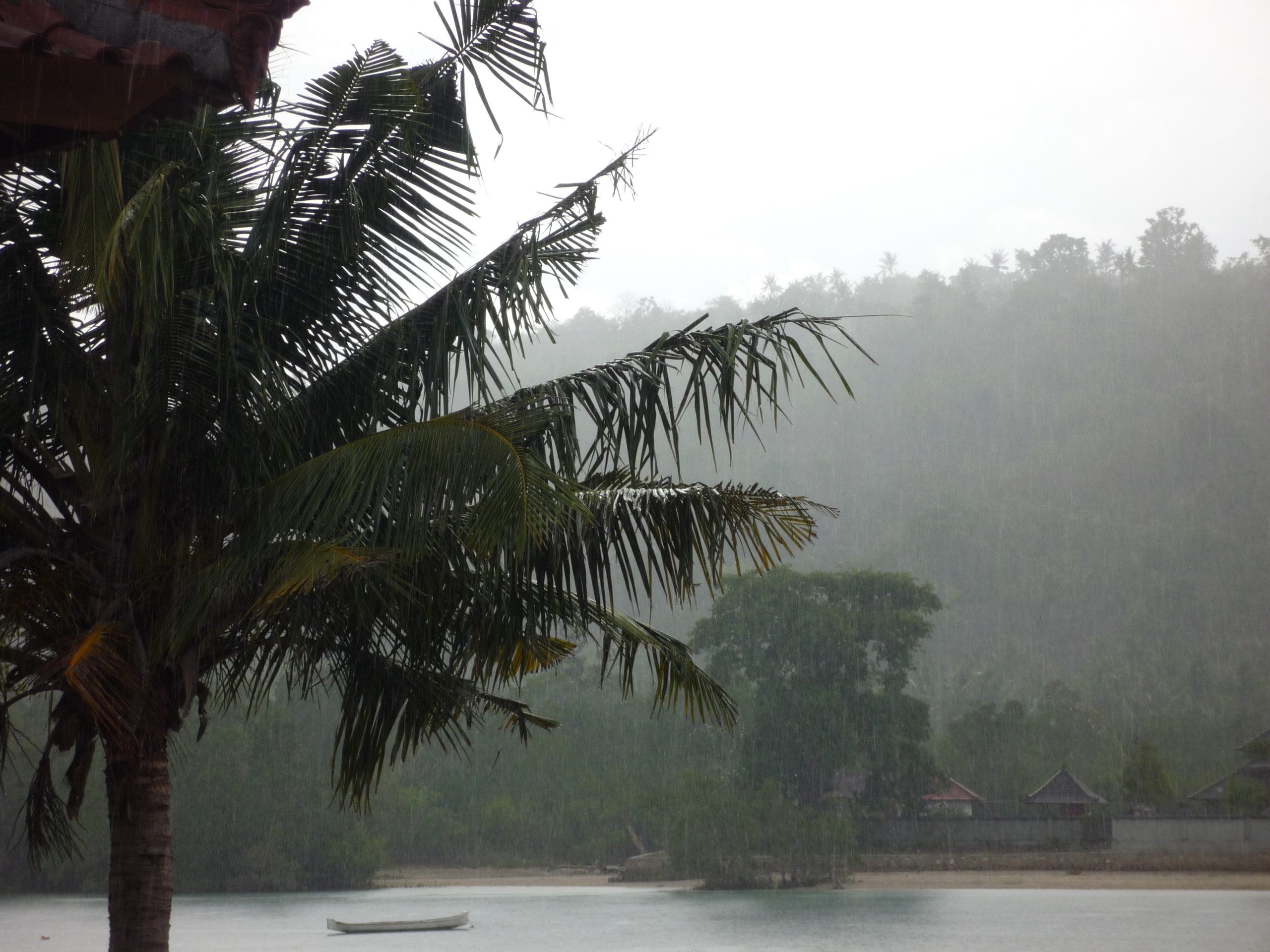 Фото Бали в ноябре