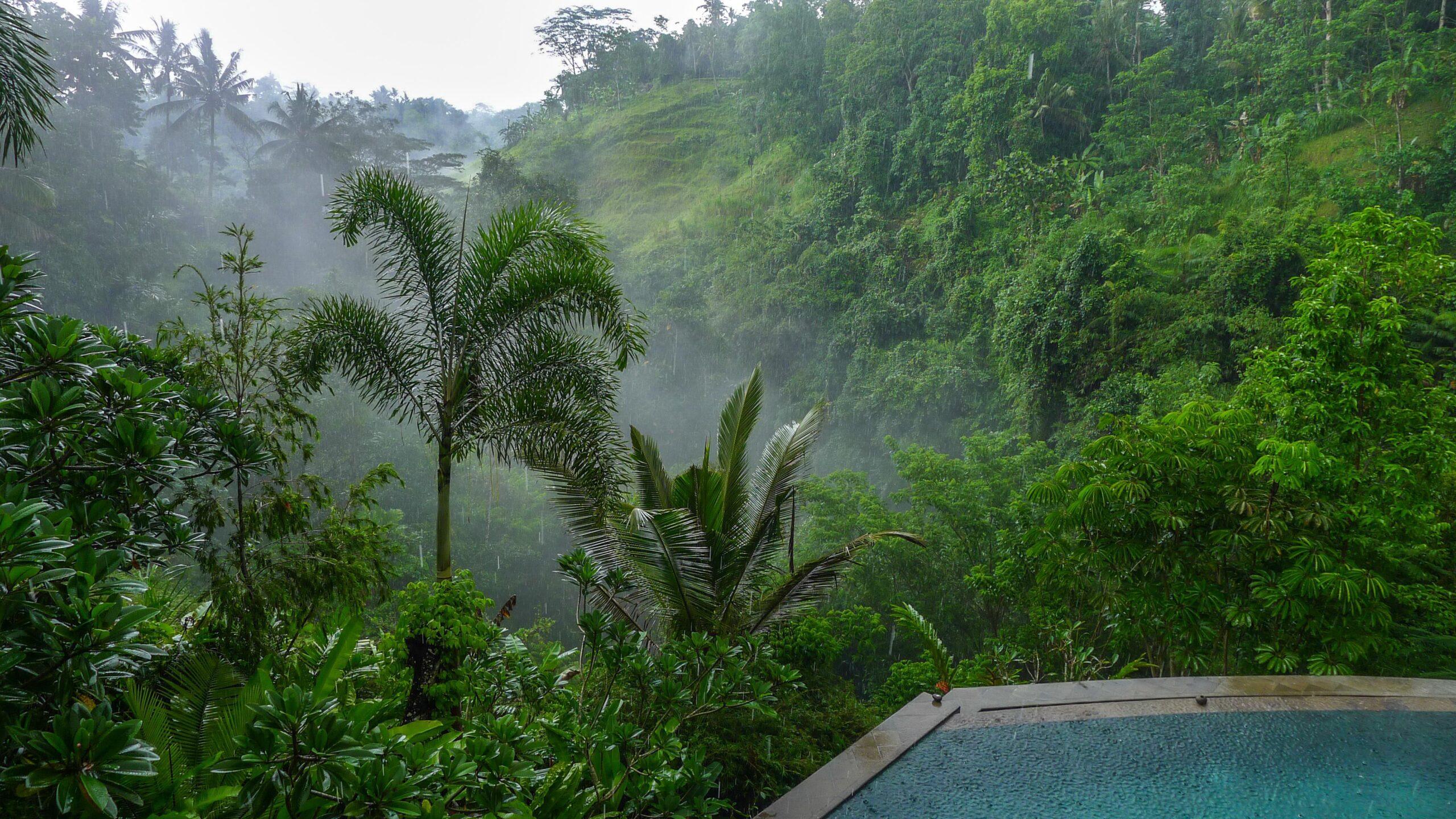 Фото Бали дождь