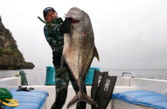 Фото охотника на Бали