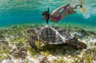 Фото подводного плавания на Бали